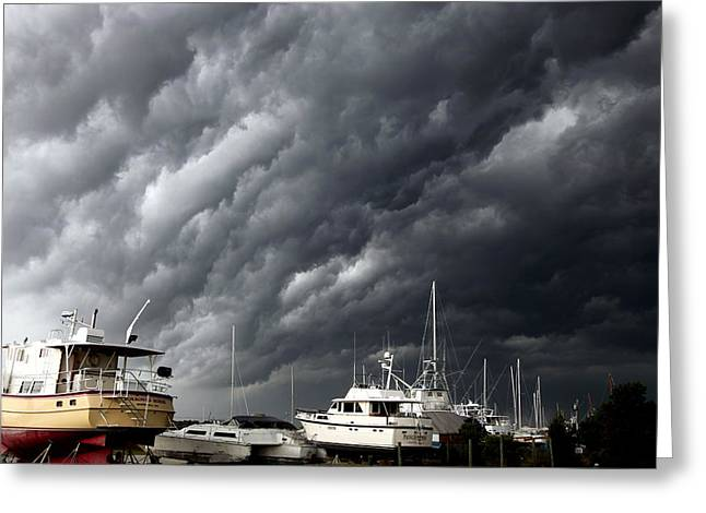 Nature's Fury Greeting Card by Karen Wiles