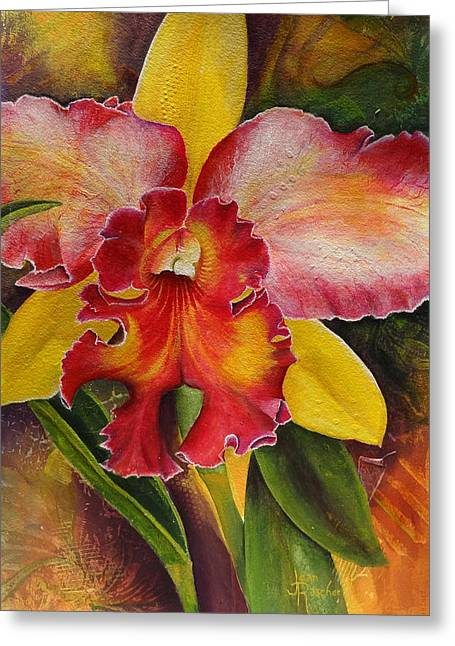 Natures Splendor Greeting Card