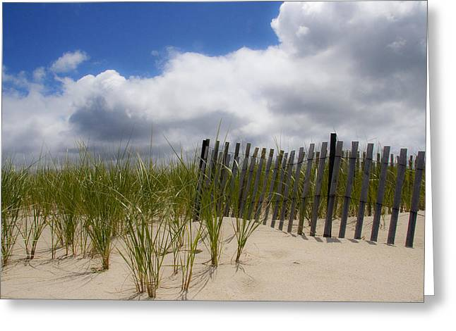 Greeting Card featuring the photograph Nauset Dune by Michael Friedman