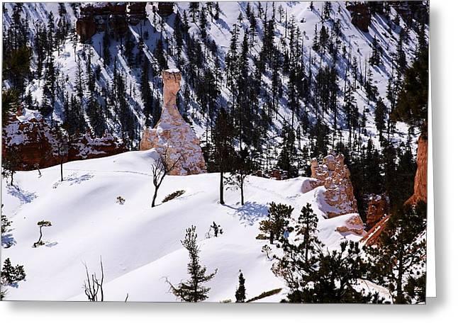 Navajo Loop Trail Greeting Card by Viktor Savchenko