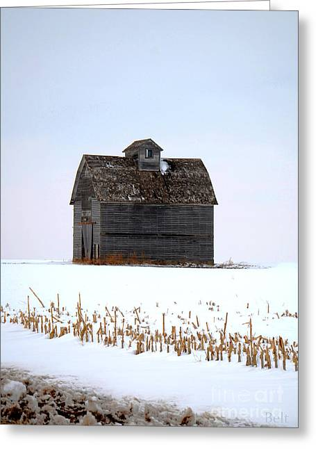 Nebraska Barn In Winter Greeting Card by Christine Belt