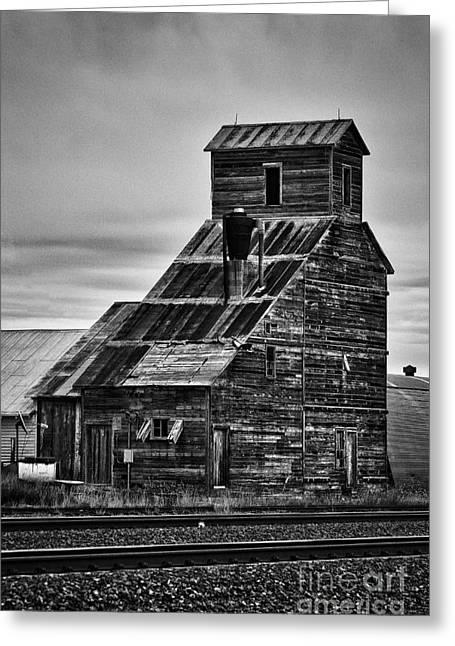 Nebraska Grain Elevator Greeting Card by David Waldrop