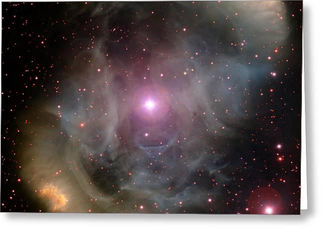 Nebula Ngc 6164-5 And Star Hd 148937 Greeting Card