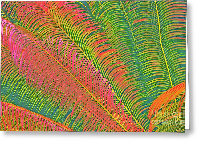 Neon Palm Abstract Greeting Card