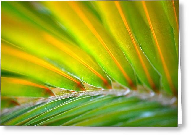 Neon Palm Greeting Card by Kimberly Gonzales