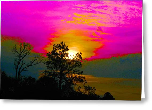 Neon Sunset Greeting Card by Judy Via-Wolff