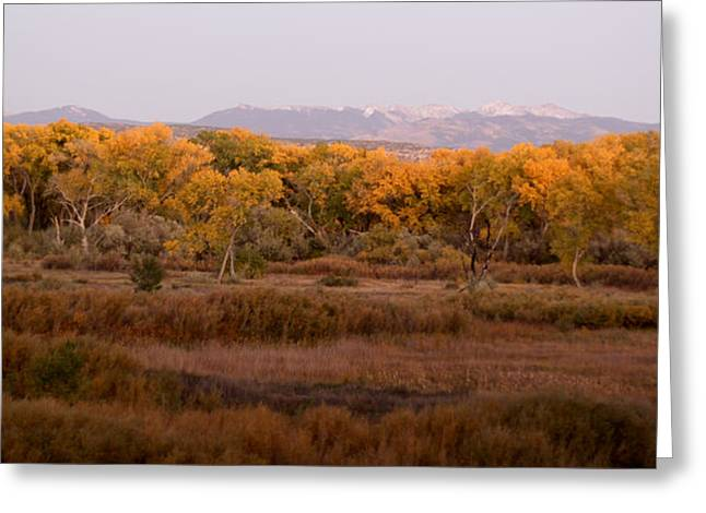 New Mexican Fall Greeting Card by Denice Breaux