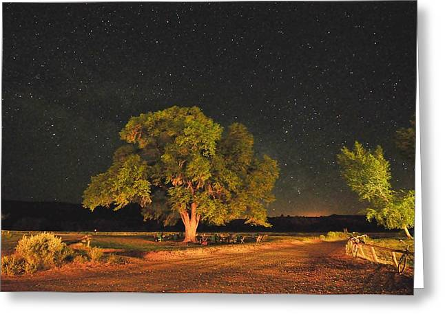 New Mexico Stars Greeting Card by Mark Fesgen