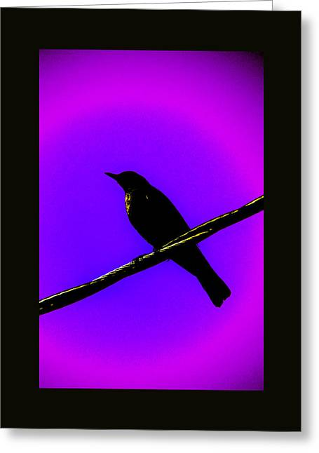 Greeting Card featuring the photograph New Mu Robin by Susanne Still