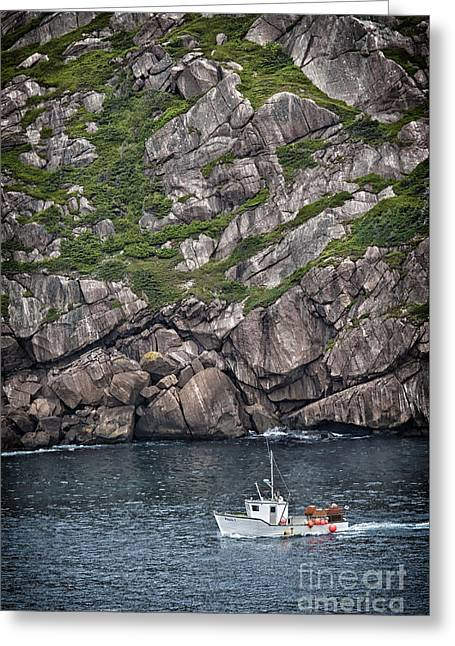 Newfoundland Fishing Boat Greeting Card by Verena Matthew