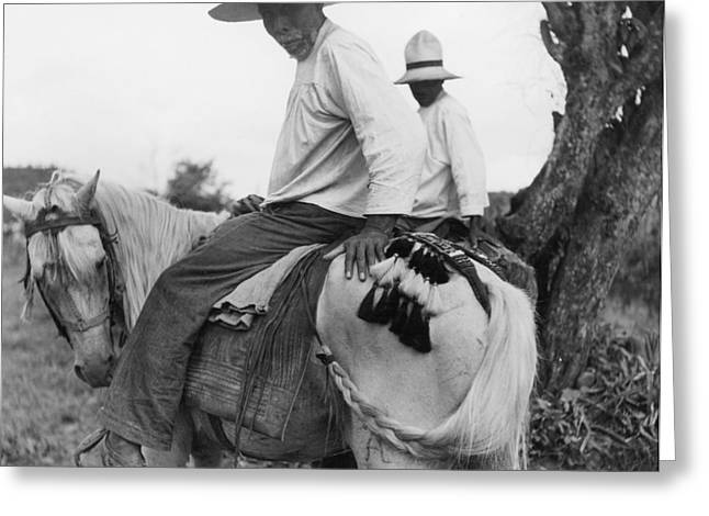 Nicaraguans Braid And Tie Horses Tails Greeting Card by Luis Marden