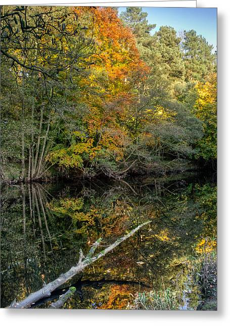 Nidd Gorge Autumn Reflections Greeting Card by Chris Frost
