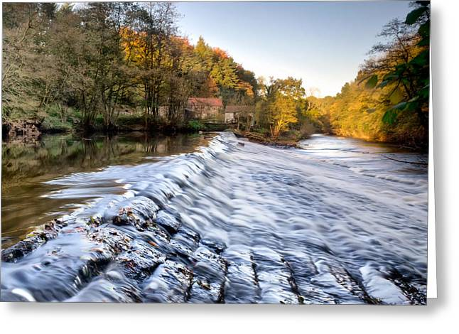 Nidd Gorge Autumn Weir Greeting Card by Chris Frost