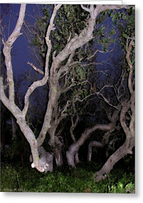 Night Branches Greeting Card