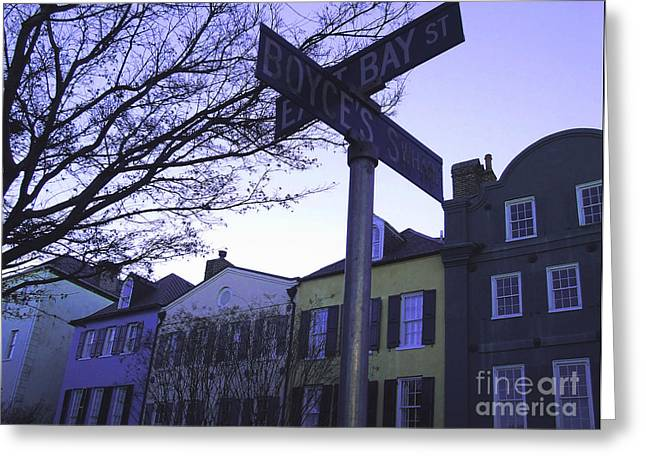 Night In Savannah Greeting Card by Andrea Anderegg