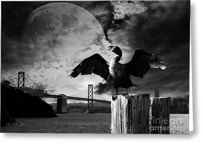 Night Of The Cormorant . Black And White Greeting Card by Wingsdomain Art and Photography