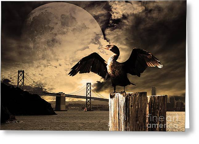 Night Of The Cormorant Greeting Card by Wingsdomain Art and Photography