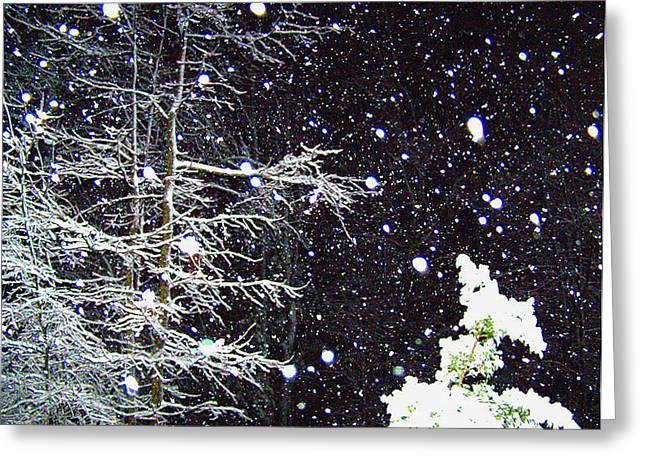 Night Snow Greeting Card by Sandi OReilly