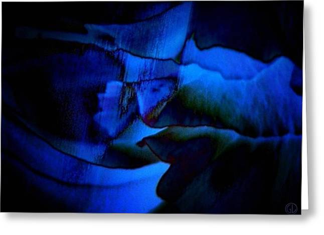 Nightly Blues Greeting Card by Gun Legler