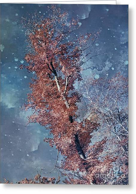 Nighty Tree Greeting Card by Aimelle