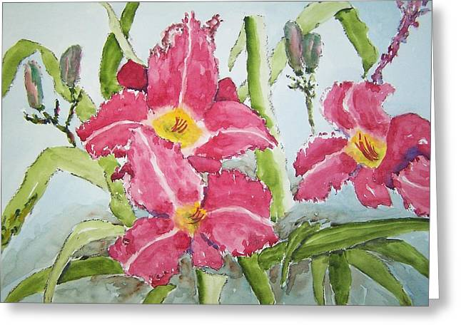 Nine Blooms Greeting Card by James Cox