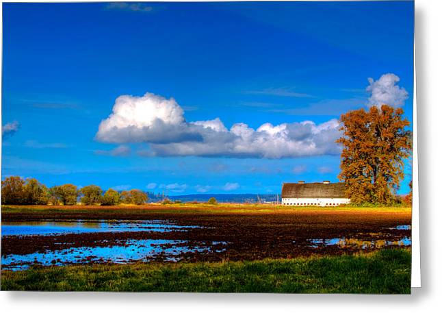 Nisqually Wildlife Refuge P35 Greeting Card by David Patterson