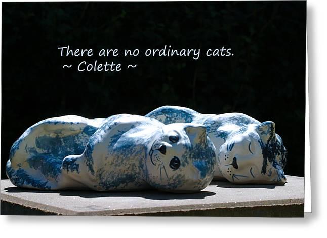 No Ordinary Cats Greeting Card