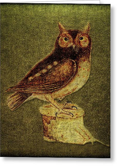 Noctua Aurita Minor Greeting Card by Li   van Saathoff