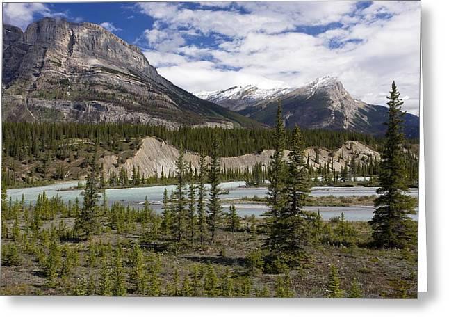 North Saskatchewan River Valley Greeting Card by Bob Gibbons