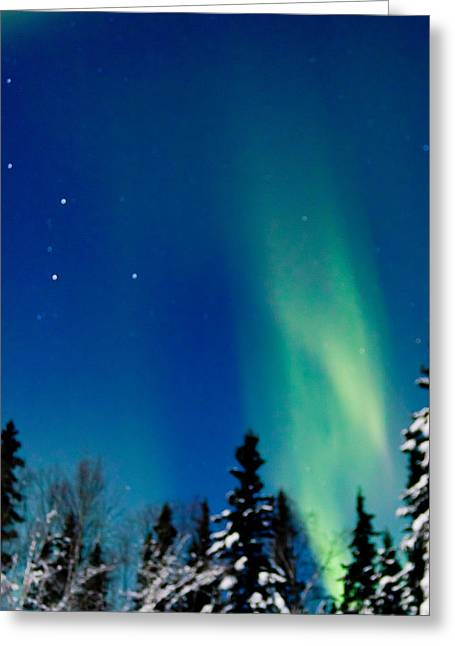 Northern Light Spiral To Cassiopeia Greeting Card by John Aldabe