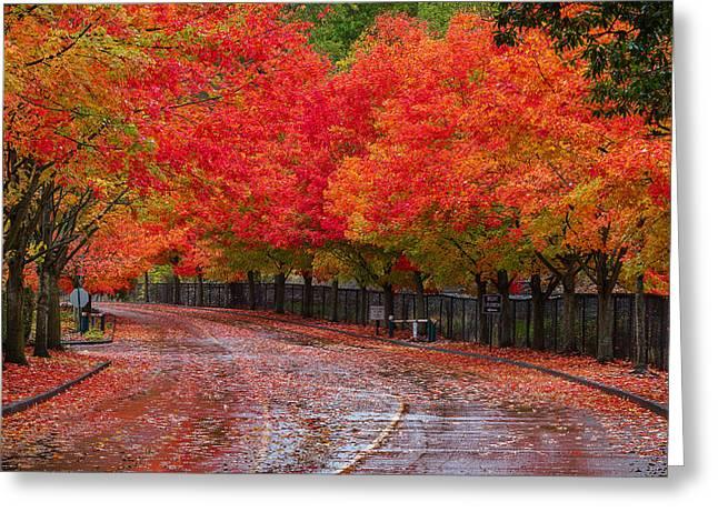 Northwest Autumn Greeting Card by Ken Stanback
