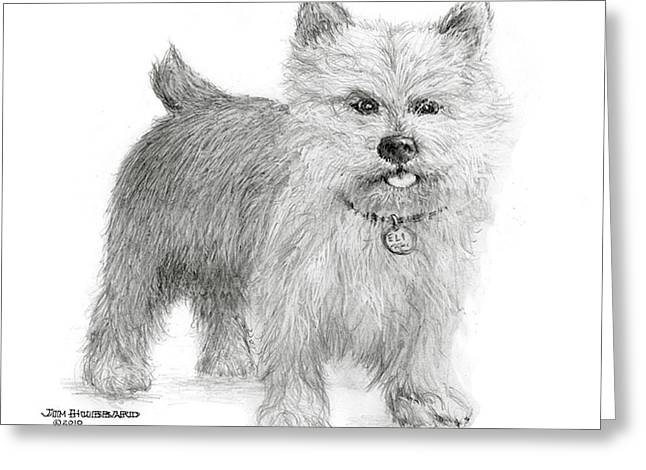 Greeting Card featuring the drawing Norwich Terrier by Jim Hubbard