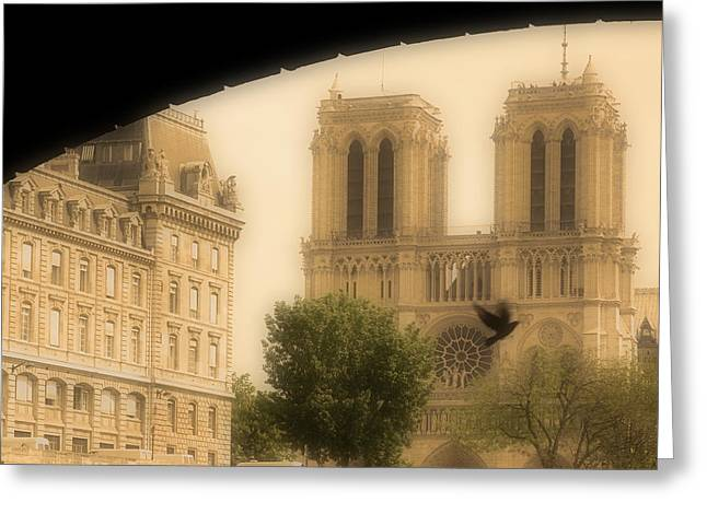 Notre Dame Cathedral Viewed Greeting Card by John Sylvester
