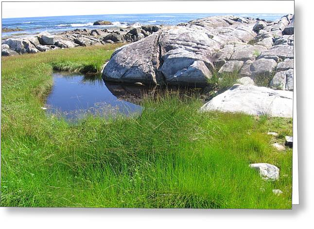 Greeting Card featuring the photograph Nova Scotia Beach by Karen Molenaar Terrell