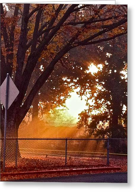 November Sunrise Greeting Card by Bill Owen