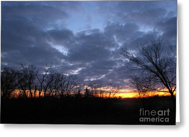 November Sunrise Greeting Card by Cedric Hampton