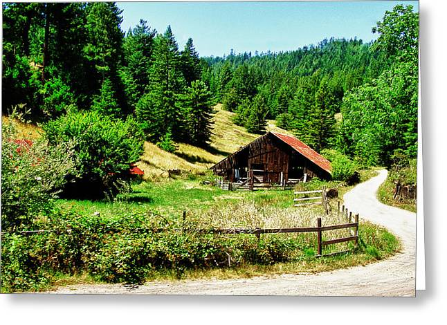 Nw California Country Road Greeting Card by Frank Feliciano
