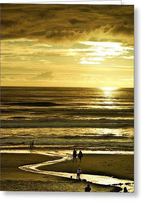 Ocean Play 2 Greeting Card by Dale Stillman