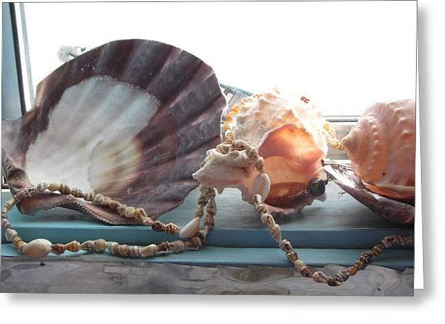 Ocean Treasures Greeting Card by Amy Bradley