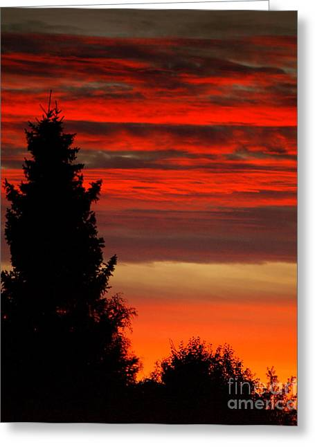 October Sky 4 Greeting Card by Michael Canning