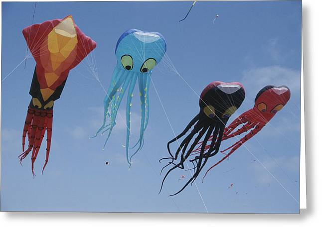 Octopus And Squid-shaped Kites Fly Greeting Card by Stephen Sharnoff