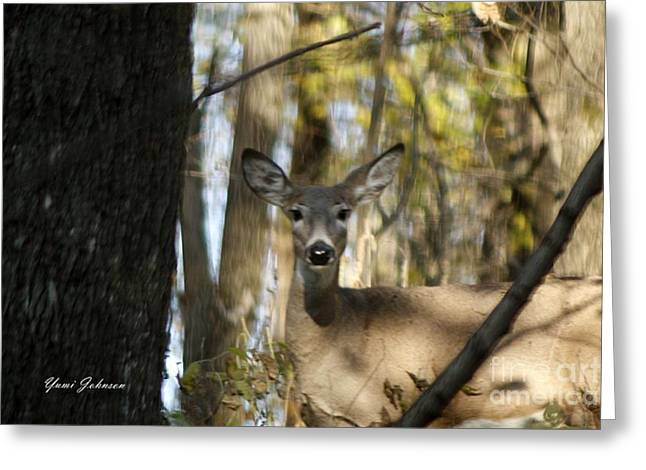 Greeting Card featuring the photograph Oh Deer by Yumi Johnson