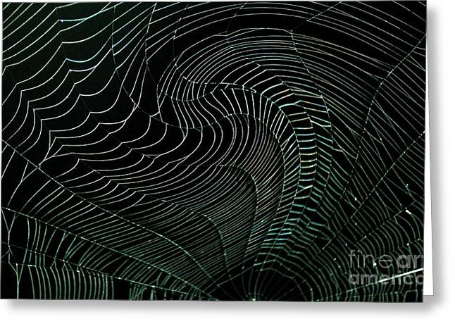 Oh What A Twisted Web..... Greeting Card by Monica Poole