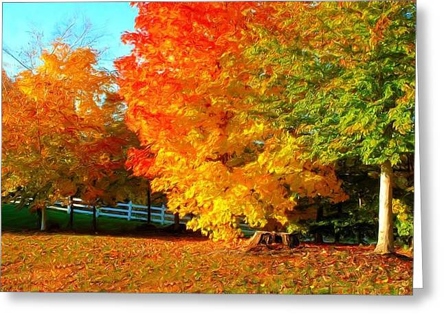 Greeting Card featuring the photograph Ohio Autumn Maples by Dennis Lundell