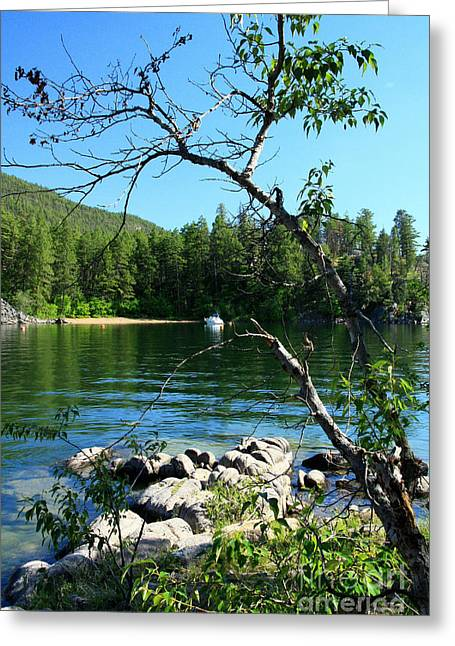 Okanagan Seclusion Greeting Card by Frank Townsley