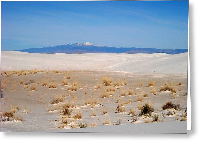 Old Baldy Mountain  Greeting Card by Randy  Rhodes