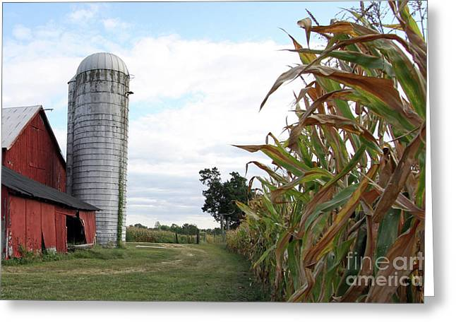 Greeting Card featuring the photograph Old Barn And Silo by Denise Pohl