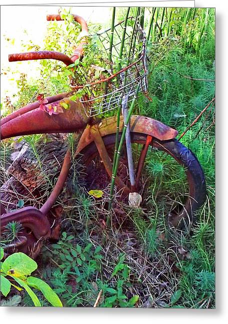 Old Bike And Weeds Greeting Card