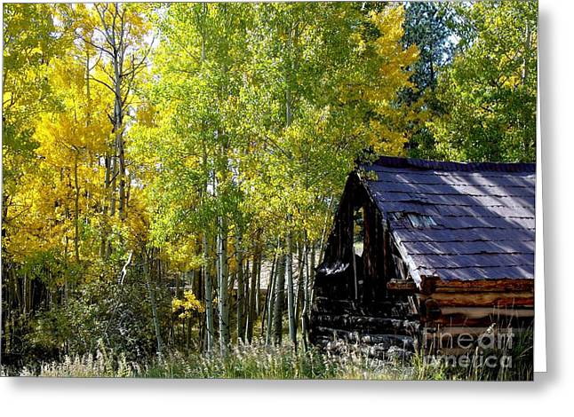Old Cabin In The Golden Aspens Greeting Card by Donna Parlow