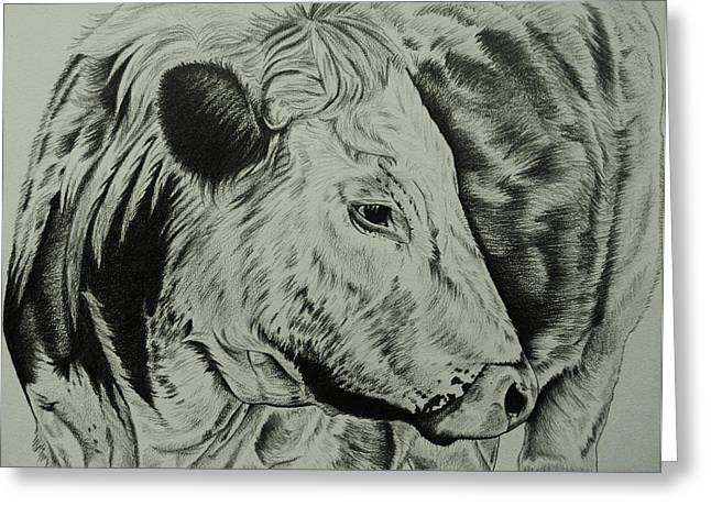 Old English Longhorn Study Greeting Card by Lucy Deane